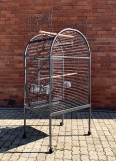 215 Parrot cage econo and DNA rear