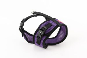 Mini Soft Harness for Cats with Velcro Purple with Leash