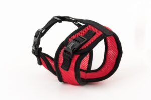 Mini Soft Harness for Cats with Velcro Red with Leash