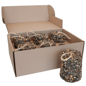 Tropical Parrot Seed Bell Box